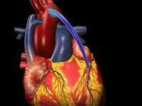 kalp-hastaliklari
