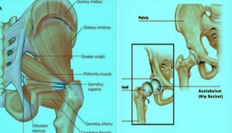 Kalça ağrısı nedenleri