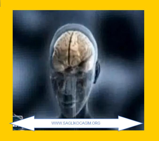 migre-nedenleri