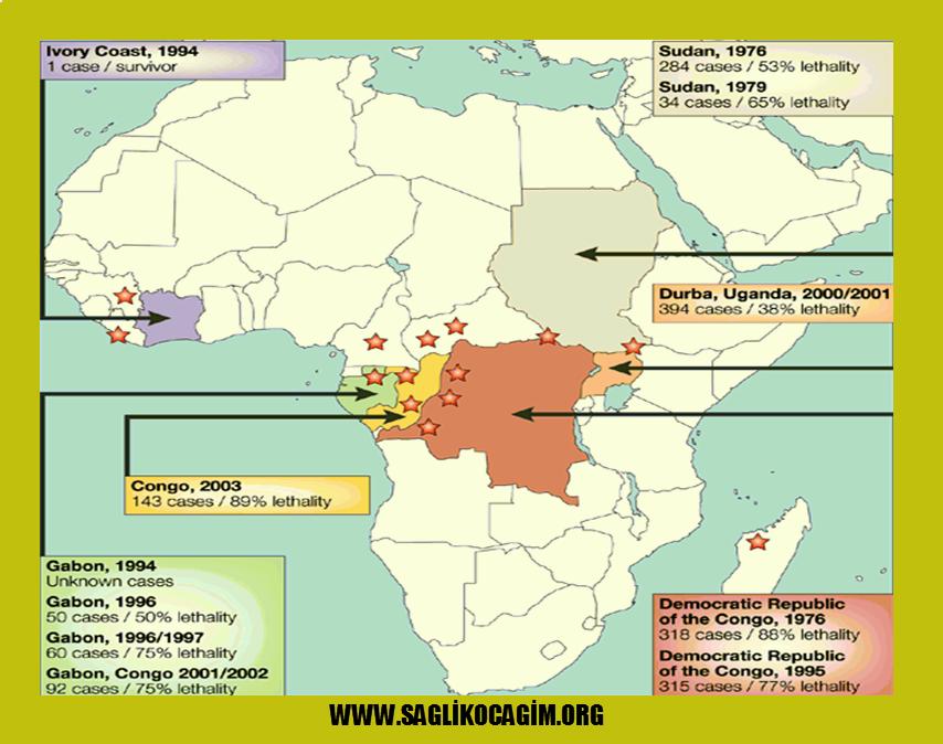 Ebola salgını nasıl önlenir