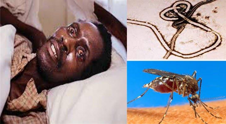 En sık görülen ölümcül hastalıklar