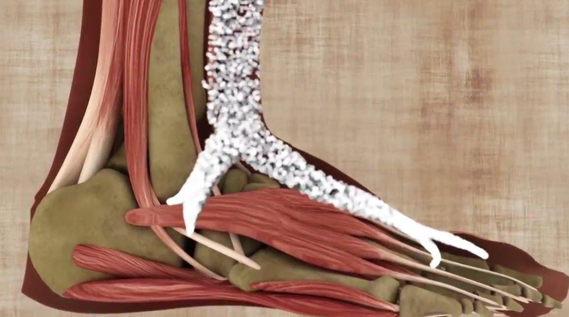 Eklem ağrıları kimlerde görülür