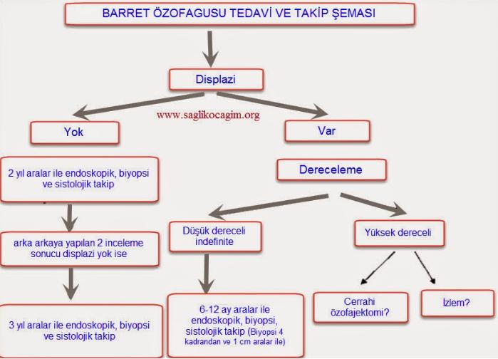 Barret özofagus tedavisi