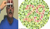Renk körlüğü teşhisi