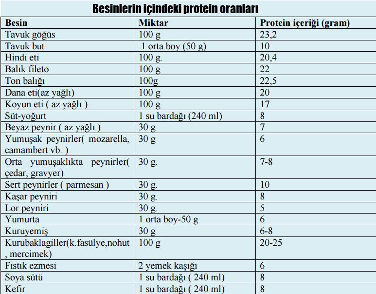 Besinlerdeki protein oranları