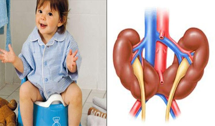 Çocuklarda idrar yolu hastalıkları