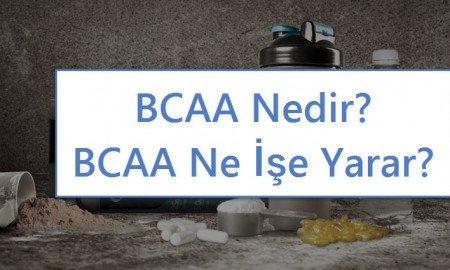 BCAA olarak bilinen dallı zincirli amino asit destekleri, yağsız kas kütlesini ve performansını arttırmak isteyen sporcular tarafından sıklıkla kullanılır. BCAA'lar Valin, İzolösin ve Lösin'den oluşur.