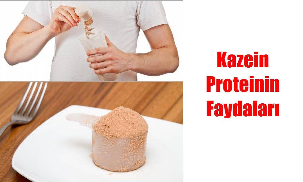 Kazein proteini geç sindirildiği için kas gelişiminde oldukça faydalıdır.