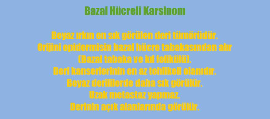 Bazal hücreli karsinom nedir