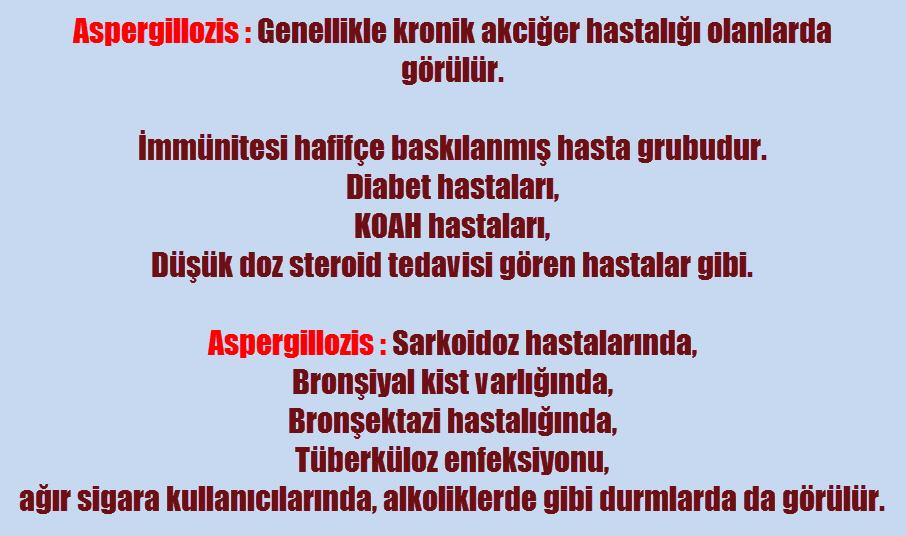 Aspergilloma nedir