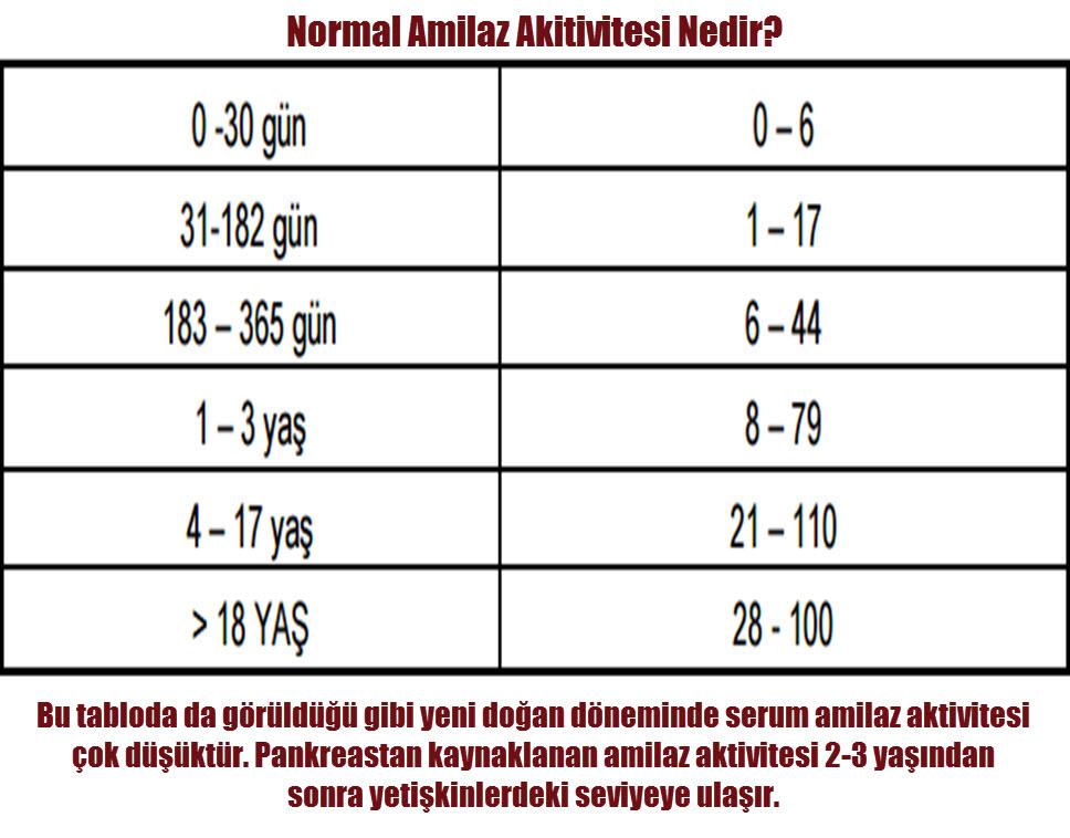 Amilaz yüksekliği neden olur