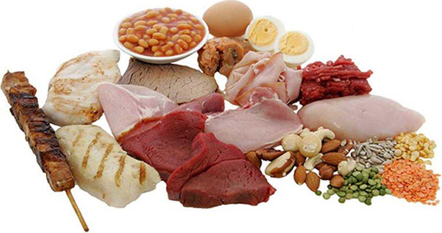Okul çocuklarının beslenmesinde hayvansal ve bitkisel proteinlerin önemi nedir